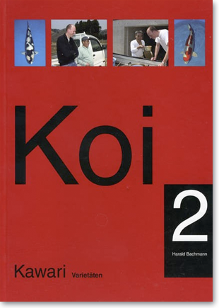 saito-kawari
